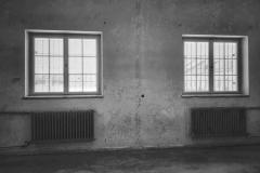 Dachau_KZ113618-01