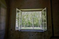 Dachau_KZ113709-01